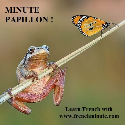 French lessons - Great value for money - Pay per minute